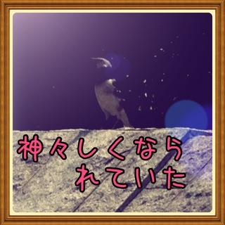 2014-04-13 13.07.23.jpg